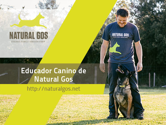 David Garrido, Educador Canino de Natural Gos