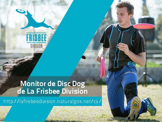 DavidDauden, Instructor de La Frisbee Division